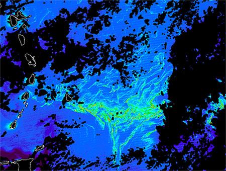 Détection banc de sargasses par satellite